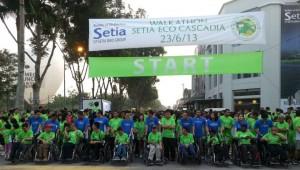 setia-1
